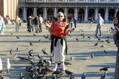 The Bird Lady of St Marks Square